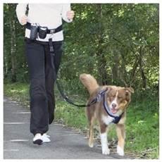 rugzak om hond te dragen